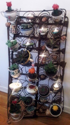 THE RIGHTS OF SPRING: Rusted Car Seat Springs with Flowering Antique Teacups, SOLD